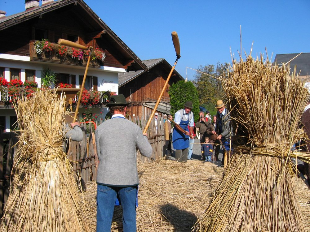 Farmers' Festival at Tiso