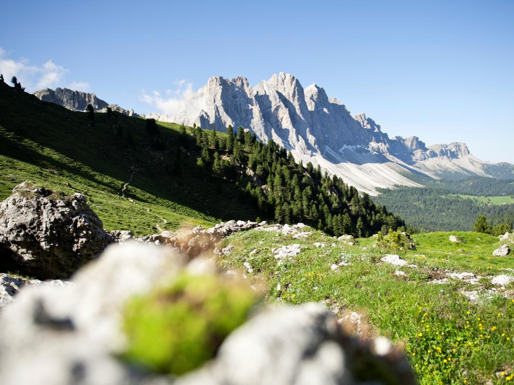 The Puez-Odle Nature Park in the Dolomites