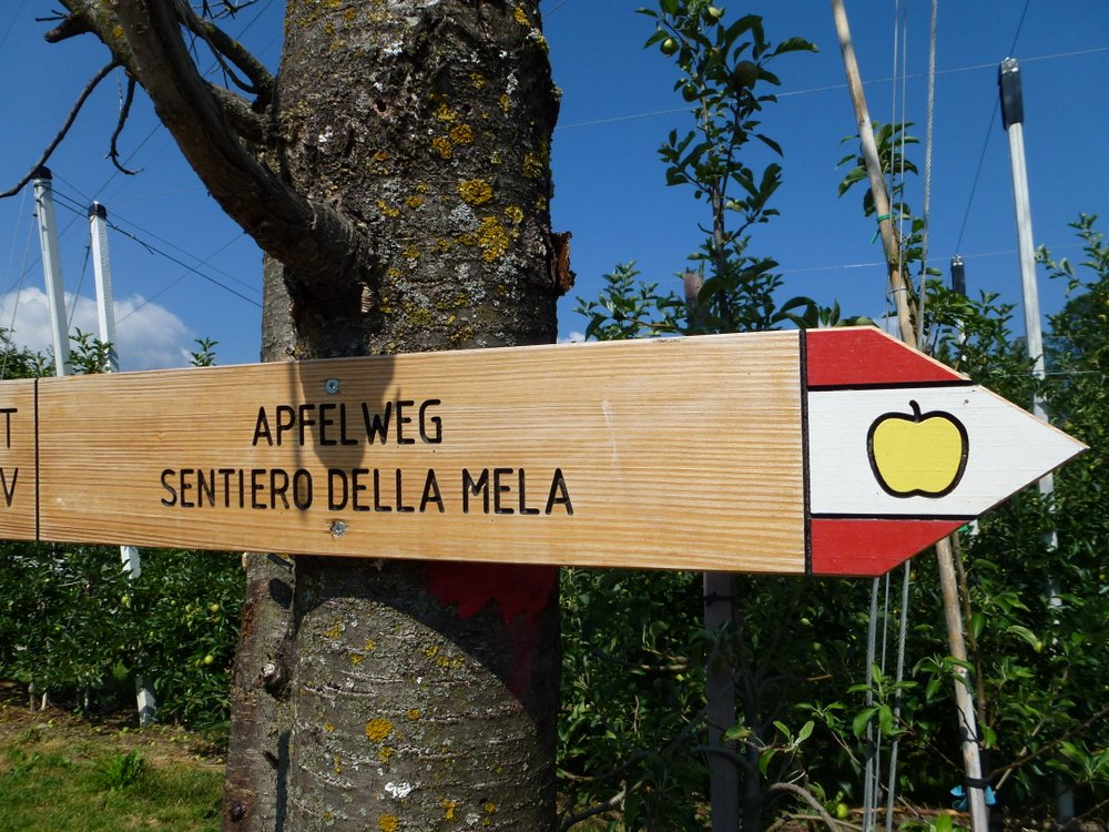 The Varied Appleweg Trail in Natz-Schabs
